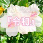 日本の新元号が『令和(れいわ)』に決定♡