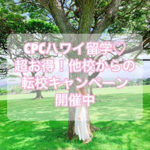 【CPCハワイ留学】お得な他校からの転校キャンペーン【割引】