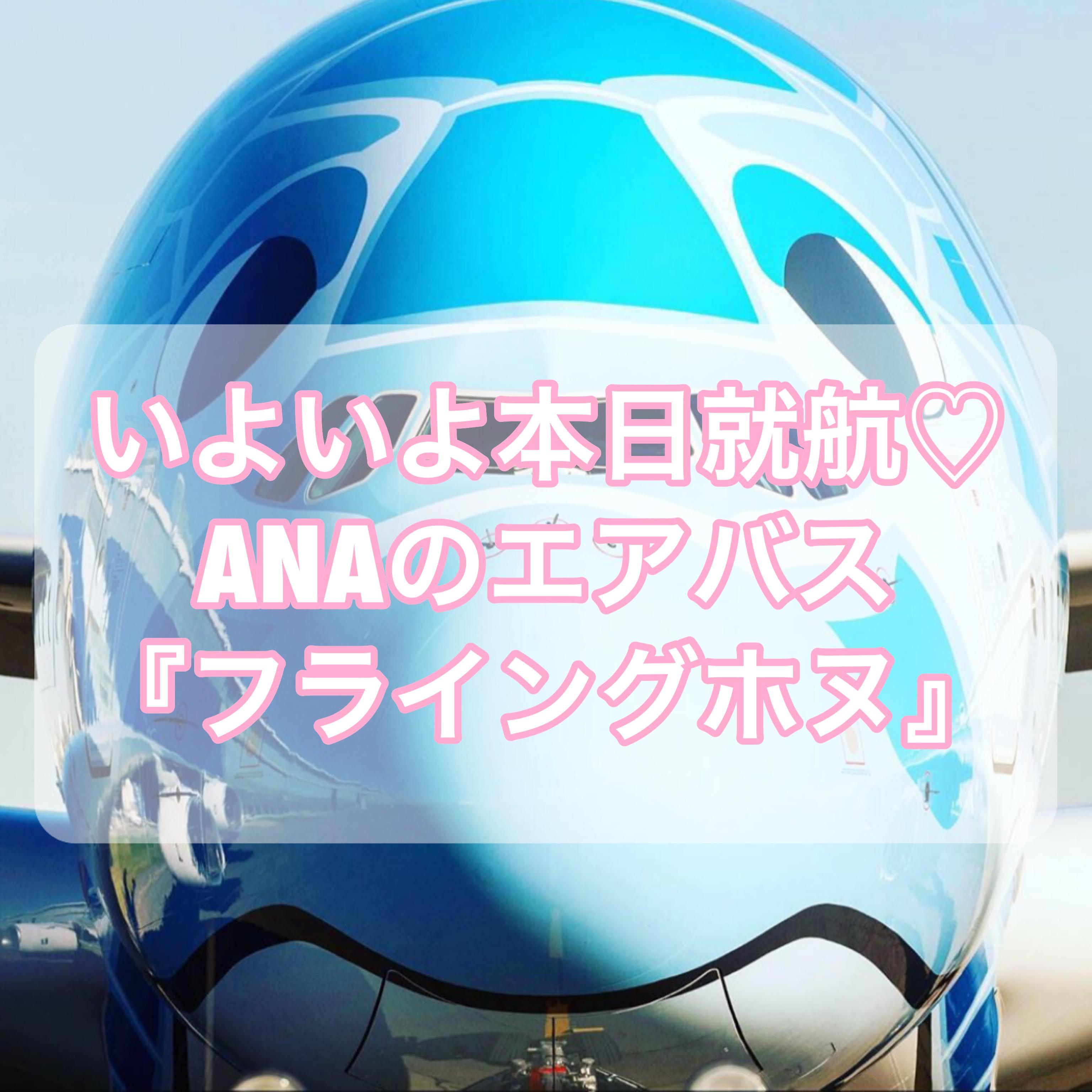 【ハワイ就航】ANAのエアバスA380型機「フライング・ホヌ」徹底解剖【超豪華】