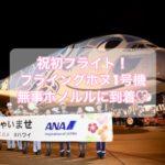 祝初フライト!『フライングホヌ1号機』ラニ君が無事ホノルルに到着♡