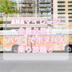 【ハワイ情報】ANAマイレージ会員がお得 【エクスプレスバス乗り放題】