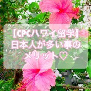 【CPCハワイ留学】語学学校に日本人が多い環境のメリット【ベストな理由】