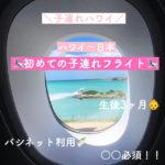 【子連れ飛行機レポ】日本へ一時帰国 ダニエルイノウエ空港→成田空港【生後3ヶ月】