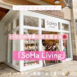 【ハワイ雑貨】「SoHa Living(ソーハ・リビング)」ビーチウォーク店【お土産に】