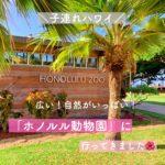 【子連れハワイ】子供に人気「ホノルル動物園(ズー)」 広い!楽しい!遊べる!