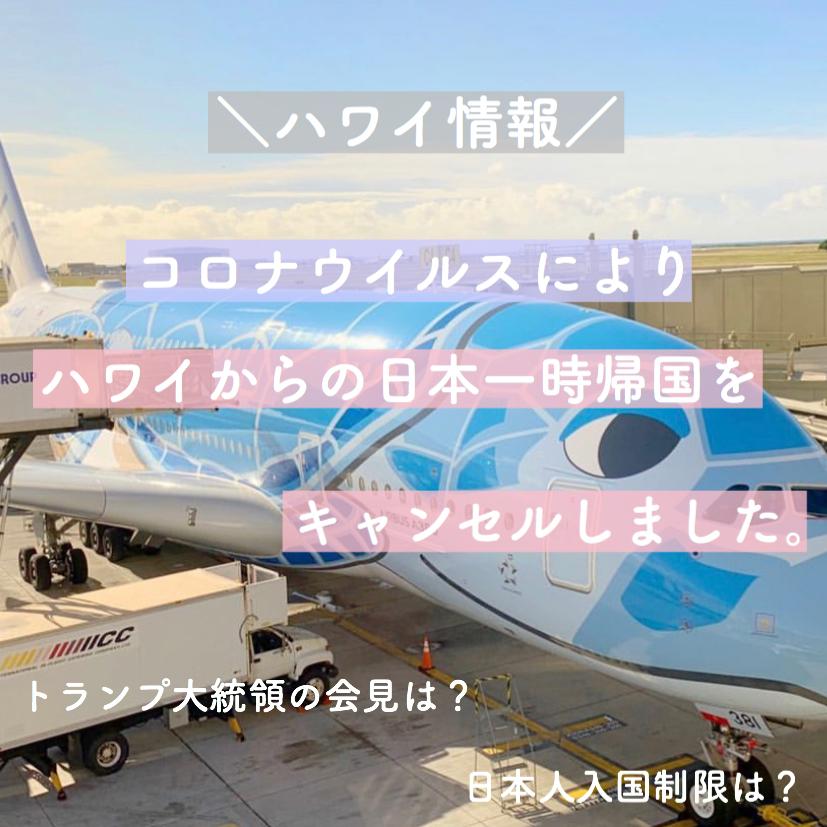 【ハワイコロナ情報】日本一時帰国をキャンセル トランプ大統領の入国制限は?