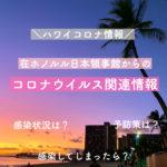 【ハワイコロナ情報】在ホノルル日本総領事館からのコロナウイルス情報全文掲載