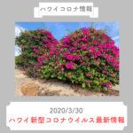 【ハワイコロナ情報】ハワイ新型コロナウイルス最新情報(2020/3/30)