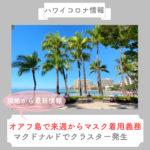 【ハワイコロナ情報】オアフ島で来週からマスク着用義務 マクドナルドでクラスター発生