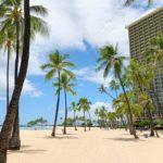 【ハワイコロナ情報】減少傾向にある新規感染者 「ザ・バス」マスク着用違反で逮捕