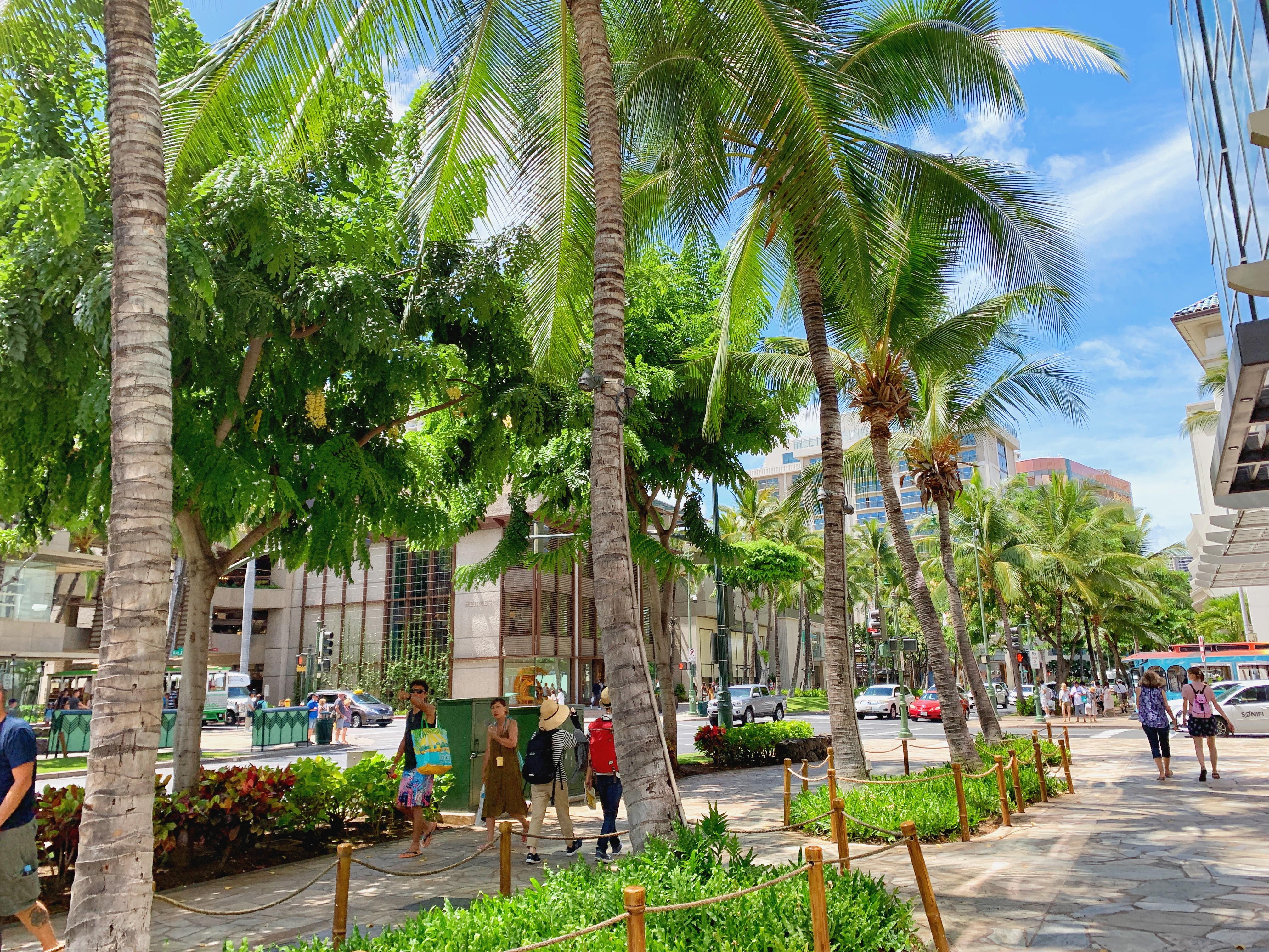 【ハワイコロナ情報】自宅待機推奨が6/30まで延長 今後の経済再開について